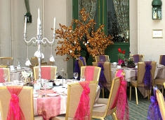 light-up-wish-tree-for-hire-events.jpg